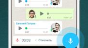 WhatsApp 04
