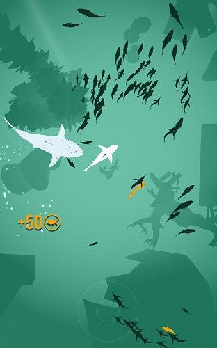 Shoal of fish 01