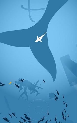 Shoal of fish 02